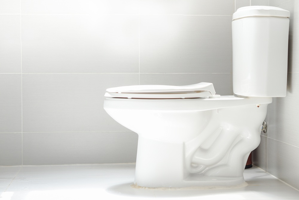 how to choose the best flushing toilet
