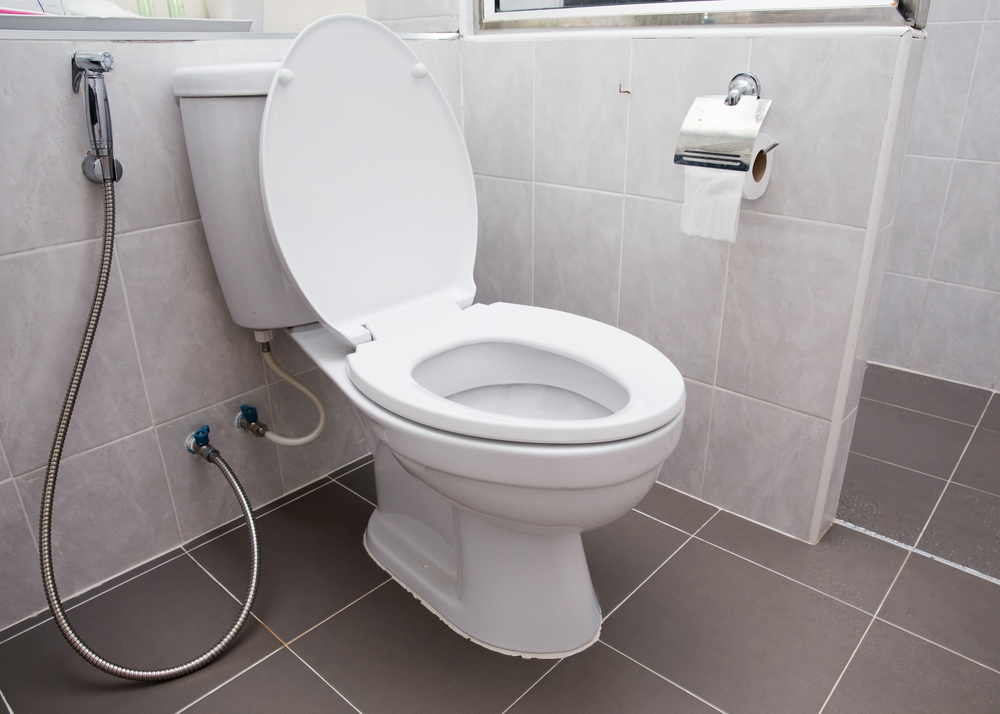 Tips to choose a water-saving toilet