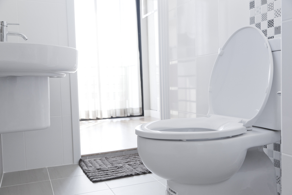 Why Choosing The Right Toilet Will Help Save Water At Home